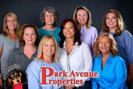Park Avenue Properties