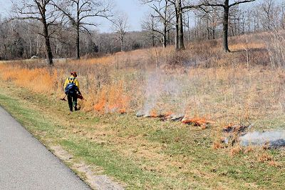 Forest Service Officials Plan Seasonal Prescribed Burns at Land Between the Lakes