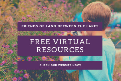 Free Virtual Resources Available Through Friends of LBL